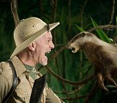 image of badger  - Terrified explorer meeting a ferocious badger face to face in the forest - JPG