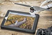 stock photo of drone  - drone aerial photography concept  - JPG