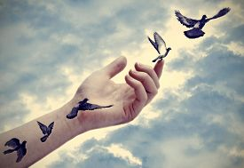 stock photo of swallow  - Bird tattoos come to life - JPG