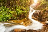 picture of rainforest  - Beautiful tropical waterfall in rainforest with sun ray - JPG