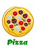 picture of hot fresh pizza  - Hot fresh pizza top view with sliced salami - JPG