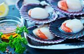 foto of scallops  - scallops with oil and salt on the tray - JPG