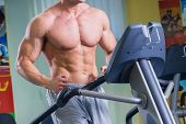 stock photo of cardio exercise  - Man in the gym - JPG