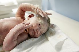 stock photo of maternity  - Midwife attending to a newborn baby covered in vernix after the delivery - JPG