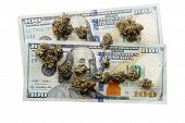 Marijuana. Cannabis. Marijuana Buds and American Money. Isolated on white. Room for text. Cash, Gras poster