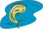 picture of mahi  - Vector art of a dolphin fish isolated on white background - JPG