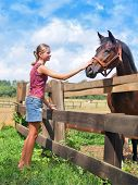 foto of farm animals  - Young slim girl and brown horse stallion at colorful farm landscape - JPG