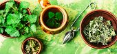 Tea With Nettle poster