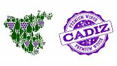Vector Collage Of Grape Wine Map Of Cadiz Province And Purple Grunge Stamp For Premium Wines Awards. poster