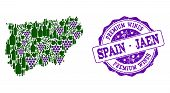 Vector Collage Of Grape Wine Map Of Jaen Spanish Province And Purple Grunge Seal Stamp For Premium W poster