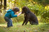 stock photo of mutts  - Young kid playing fetch game with dog and frisbee - JPG