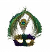 image of mardi-gras  - A Mardi Gras mask with stunning peacock feathers and gold sequins around eye holes - JPG