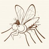 picture of gnat  - vintage mosquito cartoon - JPG