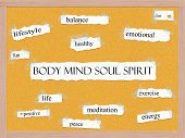 picture of pegboard  - Body Mind Soul Spirit Corkboard Word Concept with great terms such as balance diet life and more - JPG