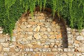image of loach  - Detail of brick wall with decorative arches and growing plant - JPG