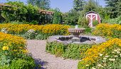 picture of black-eyed susans  - A beautifully landscaped backyard featuring a classic fountain surrounded by happy yellow black eyed susans - JPG