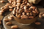 stock photo of bean-pod  - Raw Organic Cocoa Beans in a Bowl - JPG