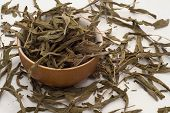 pic of salvia  - Medicinal salvia tea leaves loose in the bowl - JPG