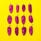 picture of yellow-pepper  - Conceptual photography - JPG