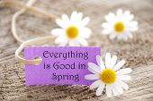 pic of proverb  - A banner with Everything is good in Spring on it - JPG