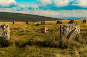 image of wiccan  - Pagan man at the Grey Wethers Stone Circles - JPG