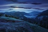 foto of moon-flower  - composite mountain landscape - JPG