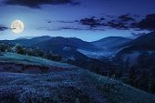 picture of moon-flower  - composite mountain landscape - JPG
