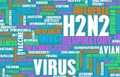 picture of avian flu  - H2N2 Concept as a Medical Research Topic - JPG