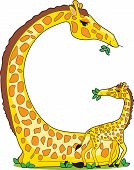 stock photo of g-spot  - A giraffe and her baby in the shape of the letter G - JPG