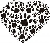 stock photo of paws  - Heart of black dogs paws on white background - JPG