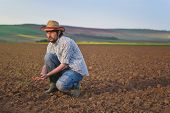 picture of farm land  - Male Farmer Examines Soil Quality on Fertile Agricultural Farm Land Agronomist Checking Soil in Hands - JPG