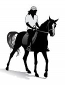 picture of saddle-horse  - Girl riding a horse - JPG