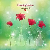 image of vase flowers  - Blooming scarlet flower buds in vases - JPG