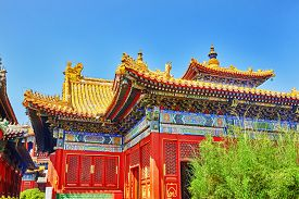 picture of lamas  - Beautiful View of Yonghegong Lama Temple - JPG
