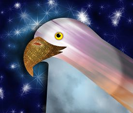 stock photo of bald headed  - Digital illustration of an American bald eagle head and beak - JPG
