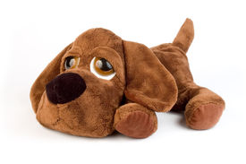 pic of stuffed animals  - sad puppy toy with big eyes over white background - JPG