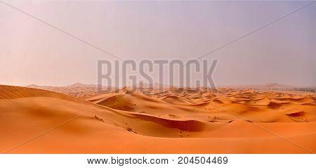 the orange dunes