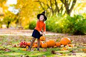 Little Girl In Witch Costume On Halloween Trick Or Treat poster