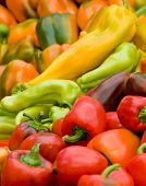foto of farmers market vegetables  - Assortment of peppers at a farmer - JPG