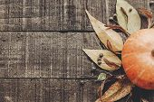 Beautiful Pumpkin With Leaves And Berries On Rustic Wooden Background, Top View. Space For Text. Tha poster