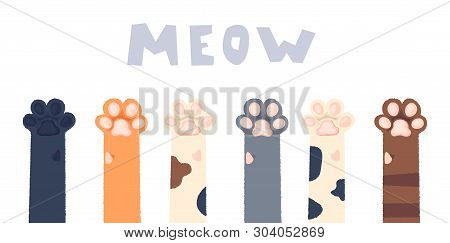 poster of Cat Paws Wallpaper, Legs, Dog Paw, Cat Background, Kitten Flat Design, Prints, Cartoon, Cute Cat Foo