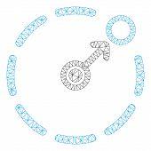 Mesh Circular Area Border Polygonal Icon Vector Illustration. Model Is Created From Circular Area Bo poster