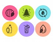 Refill Water, Water Glass And Christmas Tree Icons Simple Set. Environment Day Sign. Recycle Aqua, S poster