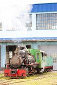 pic of former yugoslavia  - steam locomotive in depot - JPG