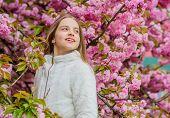 Kid Pink Flowers Of Sakura Tree Garden. Kid Enjoying Pink Cherry Blossom. Tender Bloom. Bright And V poster