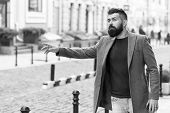Businessman Catching Taxi While Standing Outdoors Urban Background. Man Bearded Hipster Casual Style poster