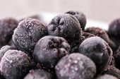 picture of aronia  - Frozen Choke berry closeup, Aronia, perfect antioxidant