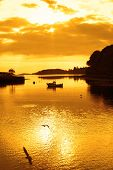stock photo of ireland  - yellow silhouette of boat and birds at sunset over the river Eske in Donegal town county Donegal Ireland - JPG