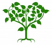 stock photo of root-crops  - Green tree illustration with the branches growing into a heart shape - JPG