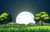 stock photo of hilltop  - Illustration of a view of the forest in the middle of the night - JPG